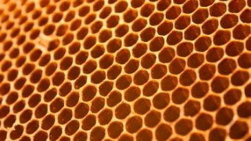 мед мёд польза и вред правильное употребление аюрведа от болезней