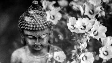 базовая медитация на дыхании для начинающих аудиод запись