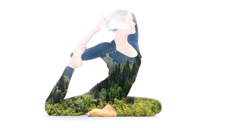 йога связь человека с природой