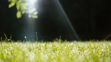 медитация пранаяма кумбхака задержка дыхания точка повороты дыхания успокоение ума как успокоить ум