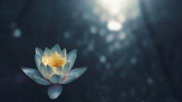 медитация очищение от энергетических блоков дыхание йога